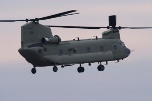 DSF5972_Chinook_med