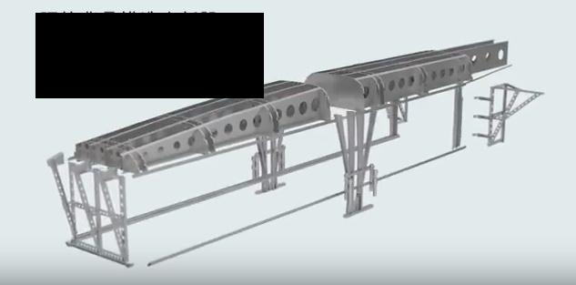 背骨と構造