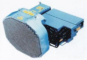 JAPG1-300x207